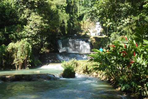 St Elizabeth: River Safari e YS Falls com almoço