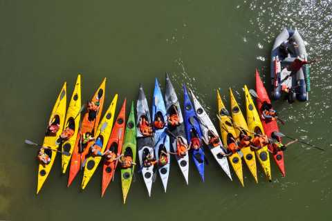 Sevilla: Guadalquivir River Kayak Tour