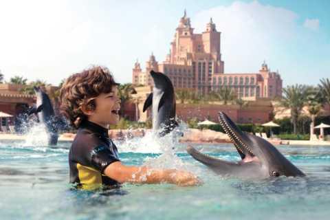 Dubai: Atlantis-oplevelse med delfinsvømning og -leg