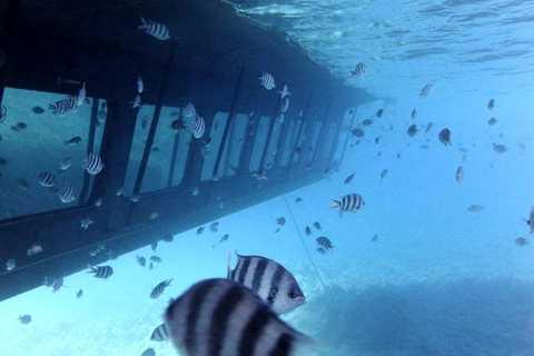 Mar Rosso: tour in sommergibile con telescopio marino