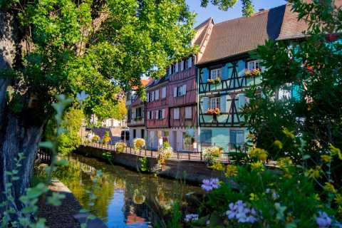 Alsace Medieval History Day Trip from Strasbourg