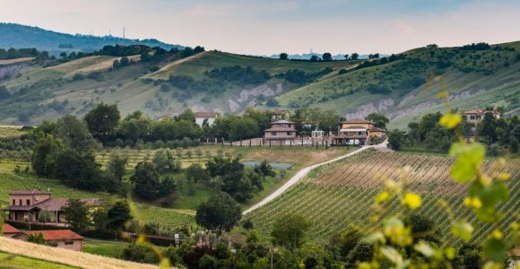 From Bologna: Romagna Region Wine Tasting Tour