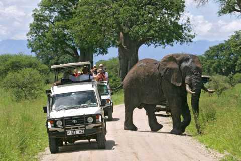 2 Days 1 Night Tarangire & Ngorongoro Crater