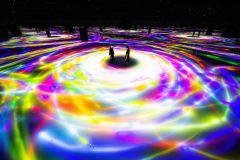 teamLab Planets TOKYO: Ingresso Museu de Arte Digital