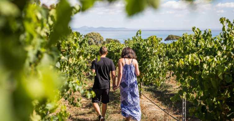 Melbourne: Around the Bay Food & Wine Taste Trail