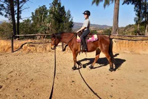 Nelspruit: 1.5-Hour Horseback Riding Tour
