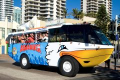 Costa Dourada: Aquaduck City Tour e River Cruise