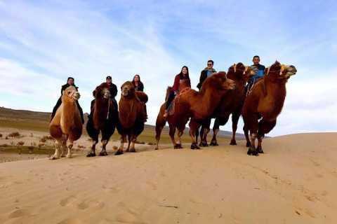 Ulan Bator: Escursione di un giorno al deserto del Semi-Gobi e Camel o Horse Ride