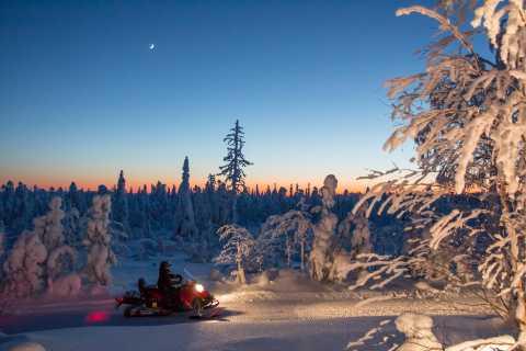 Rovaniemi: Snowmobile Safari & Campfire Evening Escape