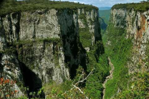 From Gramado and Canela: Itaimbezinho Canyon Guided Tour