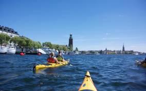 Stockholm: 2-Hour Guided Kayak City Tour & Optional Dinner
