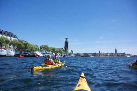 Stockholm: 2-Hour Guided Kayak City Tour & Optional Dinner