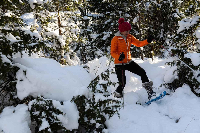 Ab Stockholm: Schneeschuhwandern in der Wildnis
