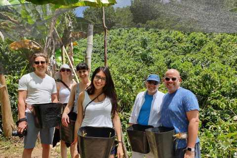 Guatape Coffee Villa, incluindo Rock Town & Waterfall