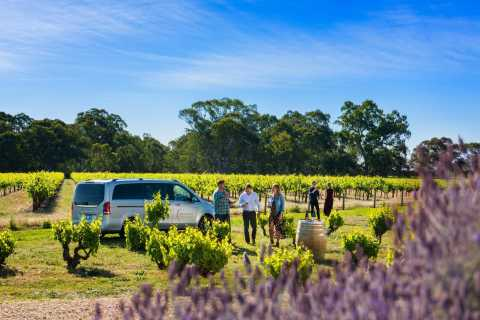 Adelaide: Boutique Barossa Small-Group Wine Tour with Lunch