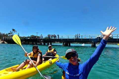 Byron Bay: Brunswick River Scenic Kayak Tour