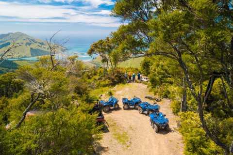 Nelson: Guided Quad Biking Tour Through Forest and Farmland