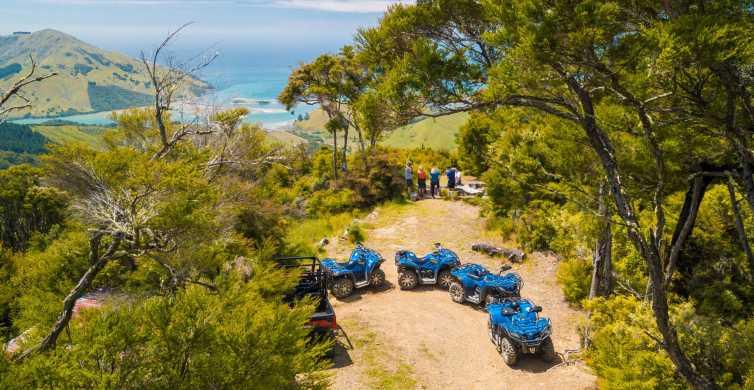 Nelson: tour guiado en quad por bosques y tierras de cultivo