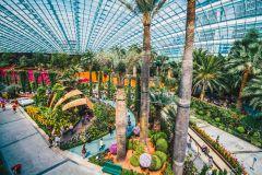 Singapura: Ingresso Combinado Jardins da Baía OCBC Skyway