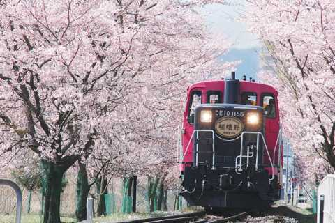 From Osaka: Kyoto Sightseeing Day Trip and Scenic Train Ride
