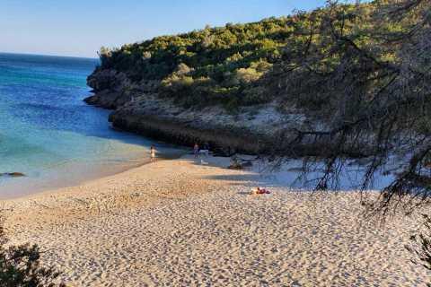 Tour della spiaggia di Lisbona per piccoli gruppi al parco naturale di Arrábida