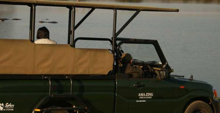 Kruger National Park Half-Day Game Drive