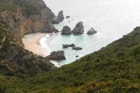 Sesimbra: Ribeira do Cavalo Beaches and Caves Boat Tour