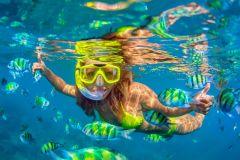 Excursão Cartagena: Mergulho, Manguezais e Playa Blanca
