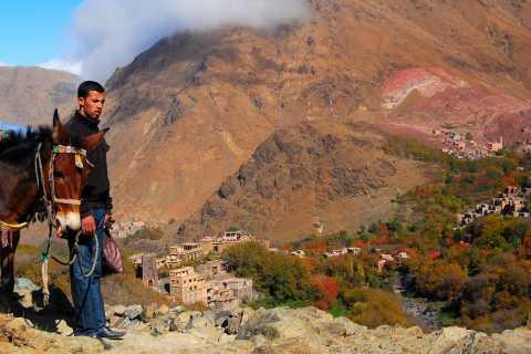From Marrakech: Full-Day Atlas Mountain Berber Tour