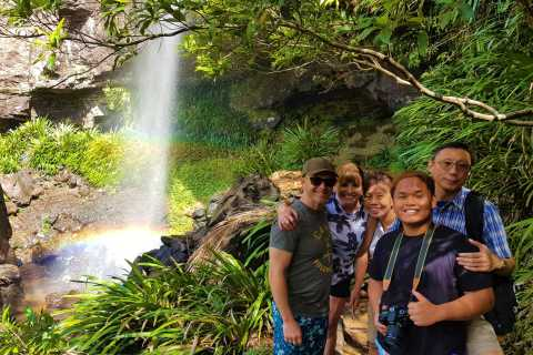Gold Coast: Small Group Super 7 Waterfalls Tour