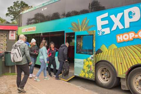 ワイヘケ島:フェリー&エクスプローラー ホップオン/ホップオフ バス チケット