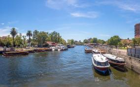 Tigre: 1-Hour River Delta Panoramic Boat Tour