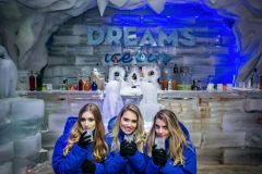 Foz do Iguaçu: Ingressos Dream's Ice Bar e Museu de Cera