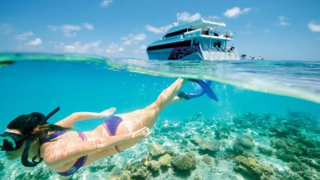 Van Muscat: Dimaniyat Islands Snorkeling Tour