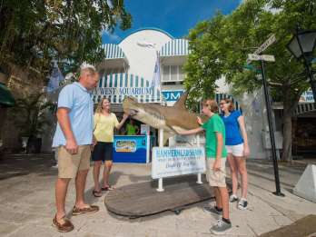 Key West Aquarium - Tickets