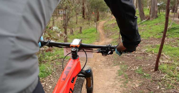 Melbourne: 1-Day Mountain Biking Adventure with Lunch