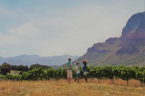 Stellenbosch: 4x4 Winelands Private Experience