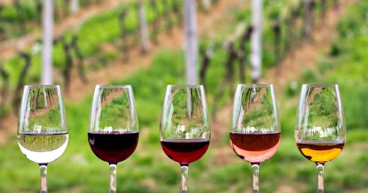 vinos del Valle de Guadalupe