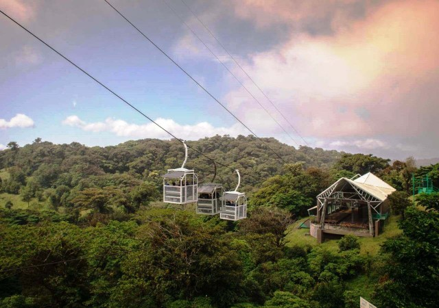 San Jose: Monteverde Sky Tram & Hanging Bridges Day Tour