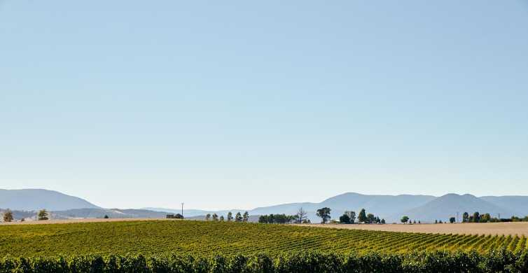 Melbourne: Yarra Valley Food and Wine Experience with Lunch