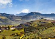 Piemont: Private Weinverkostungstour in der Barolo-Region