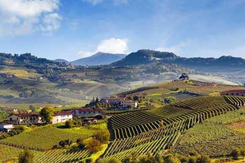 Piemonte: tour privato con degustazione di vini nel Barolo
