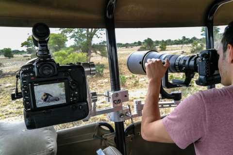 Kruger National Park: Wildlife Photography Safari Tour