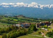 Langhe aus Mailand: Weintour mit Trüffeljagd und Mittagessen