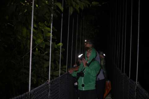 La Fortuna: Night-Time Arenal Rainforest Walk