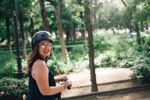 Granada: 1-Hour Panoramic Segway Tour