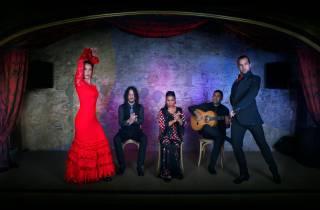 Barcelona: Flamenco Show mit einer Flasche Cava
