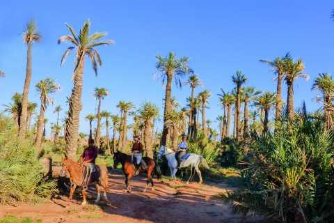 Palm Grove Horseback Riding Tour