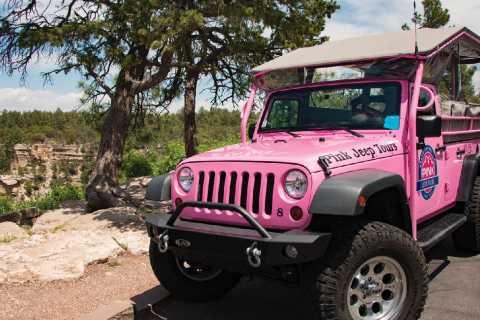 Tusayan: Grand Canyon Desert View & South Rim Pink Jeep Tour