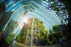 Singapura: Ingresso Eletrônico para os Jardins da Baía